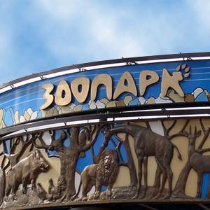 Зоопарки Калининграда